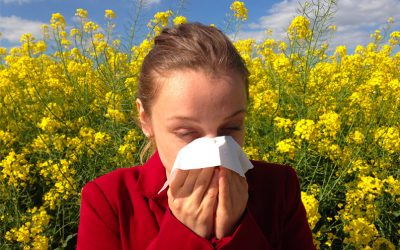 Preparing for Allergy Season